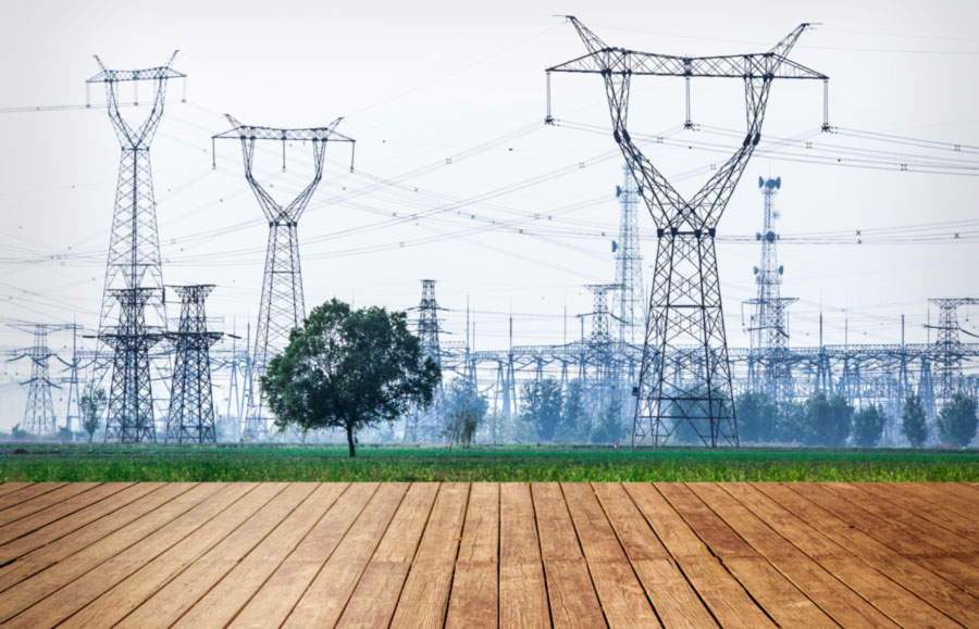 Un legno morbido per ottenere energia pulita grazie alla piezoelettricità