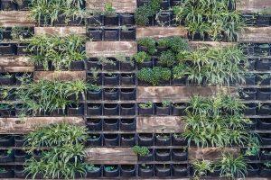 Ecodesign e design biofilico: l'arredamento del futuro è ecosostenibile